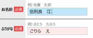 【入力時背景色指定 イメージ】